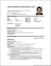 professional resume format pdf download job resume format download pdf listmachinepro com