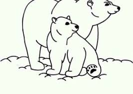 polar bear color page polar bear coloring pages coloring4free com