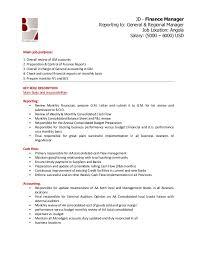 Facility Manager Job Description Resume by Financial Manager Job Description Finance Manager Ngo Recruitment