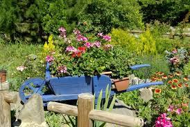 Wooden Wheelbarrow Planter by Wheelbarrow Planter Ideas U2022 Garden Outline