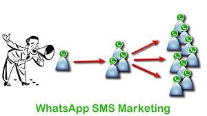tutorial whatsapp marketing send bulk whats marketing messages