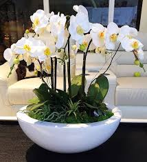 orchid arrangements custom order for large white orchid arrangement realistic