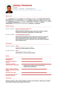 Wedding Resume Format Business Development Executive Resume Samples Visualcv Resume