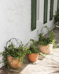 Herb Topiaries Topiary Ball Frames Sphere Topiary Frame Wire Topiary Forms