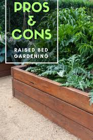 pros and cons of raised bed gardening gardening know how u0027s blog
