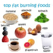best 25 top fat burning foods ideas on pinterest