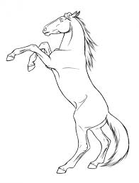 printable 21 rearing horse coloring pages 3855 horse head
