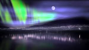 stunning borealis northern lights in canada observed