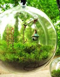 clever terrarium gardens herbs and wonders
