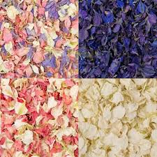 where can i buy petals 52 best confetti petals biodegradable images on