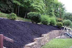 Backyard Slope Landscaping Ideas Garden Design Garden Design With Hillside Landscaping Landscapes