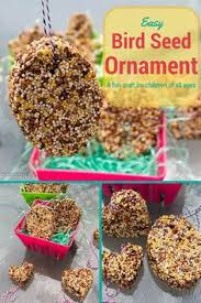 how to make edible birdseed houses bird seed ornaments