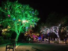 phoenix zoo lights prices phoenix zoolights 2017 mountain park ranch real estate