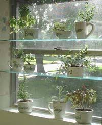 Indoor Herb Pots Window Box - step by step instructions w pics for creating your own floating