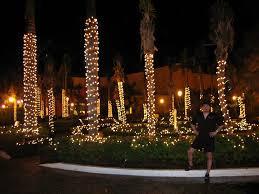 panoramio photo of christmas lights u0026 hurricane damaged palm trees