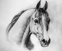 horse sketch 4 by korsakorsa on deviantart
