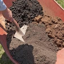 desert gardening ideas for your first veggie garden
