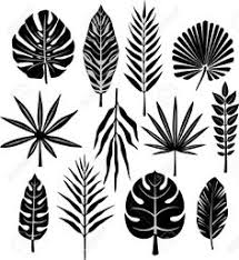 20 ways to draw a tree and 44 other nifty things from nature a