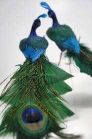 peacock feather decorations rainforest islands ferry