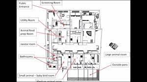 veterinary hospital floor plans help us build a wildlife hospital youtube