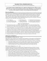 Great Resume Layout Examples Sidemcicek 15 New Resume Format For Marketing Profile Resume Sample