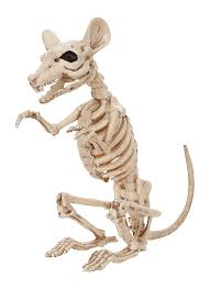 amazon com crazy bonez skeleton rat toys u0026 games