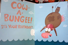Cow Birthday Card It S A Cow A Bungee Birthday Card Every Day I See A Cow