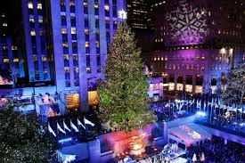 rockefeller center has chosen this year u0027s christmas tree new