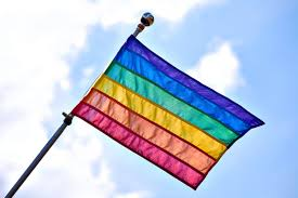 Flags Of Our Fathers Script Map Only 4 States Ban Lgbtq Conversion Therapy For Kids Vox