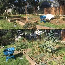 self sustaining garden self sustainable garden steemit