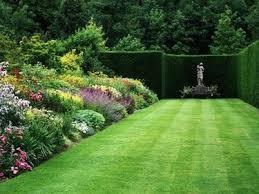 cura giardino siepi da giardino realizzazione e cura delle siepi in giardino
