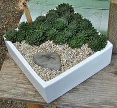 Unique Planters For Succulents google image result for http nadiaknowsgardens files wordpress
