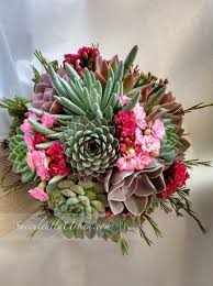 succulent bouquet frances succulents