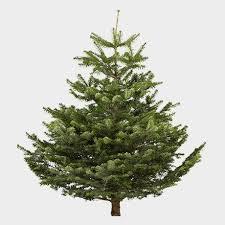 christmas tree artificial christmas trees artificial christmas trees diy at b q