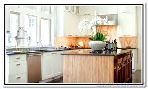 Concealed Hinges Cabinet Doors Inset Cabinet Door Hinges Concealed Inset Cabinet Hinges The