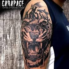 tattoo kit supplier in kolkata carapace tattoo piercing tattoo shop in kolkata
