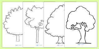 tree outline worksheets tree outline worksheets tree outline