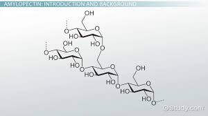 Table Sugar Formula What Is Sucrose Function Structure U0026 Chemical Equation