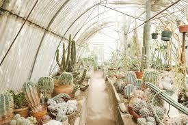 Clark Botanical Gardens The Planthunter Moorten Botanical Garden A Family Affair