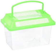 amazon com plastic fish bug box assorted colors toys u0026 games