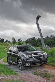 2016 subaru forester review caradvice