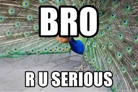Peacock Meme - bro r u serious peacock meme meme generator