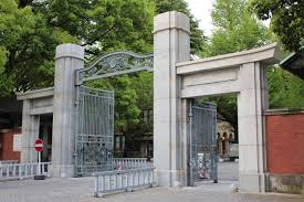 modern house entrance driveway gate entrance latest metal railings house main design and