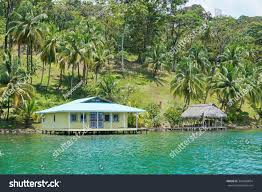 House Over Water House Hut Over Water Coconut Palm Stock Photo 343698854 Shutterstock