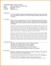 resume format on microsoft word 2007 pleasurable design ideas