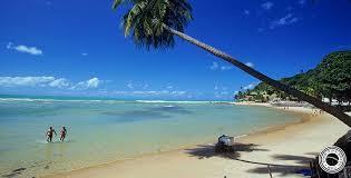 Las mejores Playas de Brasil...