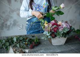Putting Roses In A Vase Fresh Flowers Being Arranged Into Beautiful Stock Photo 594528224