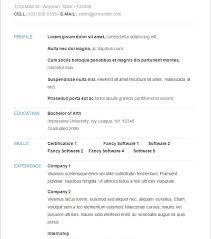 Basic Sample Of Resume Download Easy Resume Examples Haadyaooverbayresort Com
