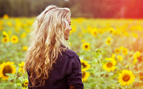 single sun flower wallpapers 11 qualities of the proverbs 31 woman we should strive towards