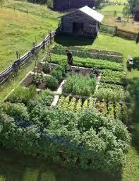 how to plan a bigger better vegetable garden organic gardening